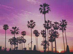Florida beach in sunset.