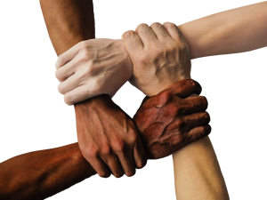Hands with different skin tones holding one another as a sign of solidarity and diversity.
