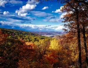 Catoctin mountains in Maryland.